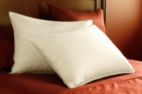 Pacific Coast® Eurofeather™ Pillow