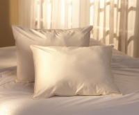 Natural Living® Extra Loft Pillow